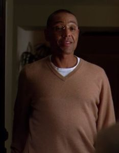 S3E11 Fring sweater crop